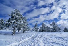 d kształtuje teren zima Zdjęcia Stock