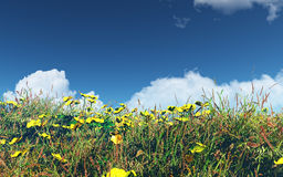 3D landscape with buttercups and grass Royalty Free Stock Photo