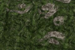 3D Landscape in Motion. nice 3D Rendering Stock Images