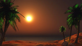 3D landscape of a sunset beach with palm trees Royalty Free Stock Photos