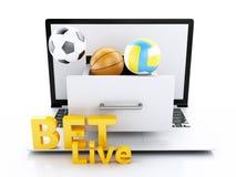 3d laptop PC met sportballen en spaanders Stock Foto