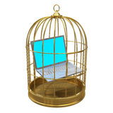3d Laptop pc trapped in a birdcage. 3d render of a laptop pc trapped in a birdcage royalty free illustration