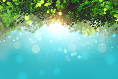 3D leaves on a blue sky background with bokeh lights. 3D render of leaves on a blue sky background with bokeh lights Stock Images