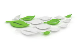 3D Leaves. 3D generated abstract green and white leaves Royalty Free Stock Photography