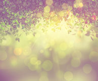 3D leaves and sunlight with retro effect Stock Image