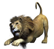 3d Lion Royalty Free Stock Image