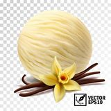 3d lody Realistyczne wektorowe waniliowe miarki waniliowy kwiat i kije royalty ilustracja