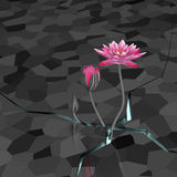 3d lotus. 3d lotus in abstract background Royalty Free Stock Photos