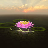 3d lotus. Lotus 3d rendering in background abstract Royalty Free Stock Image