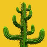 3d rendering of cartoon stylized mexican cactus. 3d Low poly cartoon stylized  cactus. Plant isolated on vivid yellow background Stock Photo