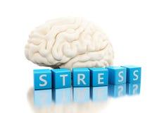 3d ludzki mózg z stresu słowem w sześcianach Zdjęcia Royalty Free