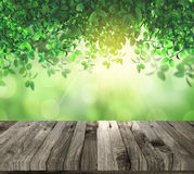 3D lwooden table eaves and sunlight Stock Images