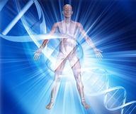 3D male medical figure on abstract DNA background. 3D render of a male medical figure on an abstract DNA background Stock Images