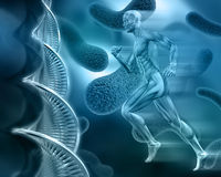 3d male medical figure on abstract DNA virus background. 3D male medical figure with muscle map on an abstract virus background with DNA strands Stock Image