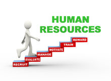 3d man human resources word steps Royalty Free Stock Images
