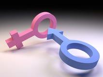3D Mannelijke en Vrouwelijke Symbolen van het Geslacht Stock Foto