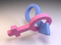 3D Mannelijke en Vrouwelijke Symbolen van het Geslacht Royalty-vrije Stock Afbeeldingen