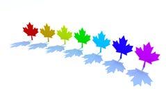 3d maple leafs rainbow colors. Canadian symbol ecology Stock Photos