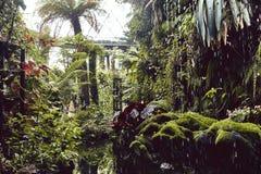 D?me de nuage aux jardins par la baie photo libre de droits