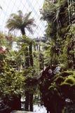D?me de nuage aux jardins par la baie image libre de droits