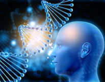 3D medical background with DNA strand and male head. 3D medical background with DNA strands and male head Stock Image