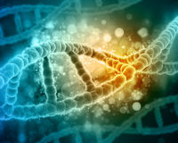 3D medical background with DNA strands. 3D medical background with detailed DNA strands Stock Photography