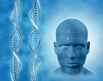 3D medical background with DNA strands Stock Photos