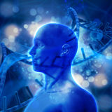 3D medical background with DNA strands and male head. 3D render of a medical background with DNA strands and male head Stock Photo