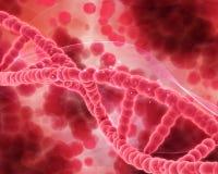 3D Medical background with DNA strands. 3D render of a medical background with DNA strands Royalty Free Stock Image