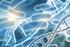 3D medical background with DNA strands Stock Image