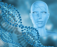 3D medical background with female head and DNA strands Royalty Free Stock Image