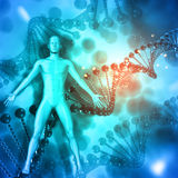 3D Medical background with male figure on DNA strands Royalty Free Stock Photos