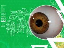 3D medical illustration of the eye Stock Photo