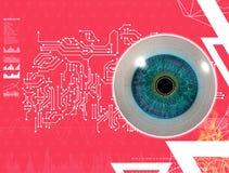 3D medical illustration of the eye. On pink background Stock Images