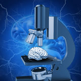 3D medical image depicting alzheimers research. 3D medical image with brain under microscope depicting alzheimers research royalty free illustration
