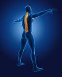 3D medical man with skeleton Stock Photos