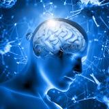 3D medische achtergrond met mannelijk cijfer met hersenen vector illustratie