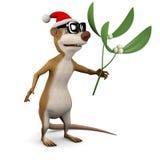 3d Meerkat mistletoe Royalty Free Stock Image
