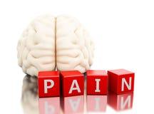 3d Menselijke hersenen met pijnwoord in kubussen Royalty-vrije Stock Fotografie