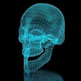 3D Mesh Skull illustrazione vettoriale