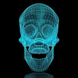 3D Mesh Skull Stock Image