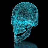 3D Mesh Skull Royalty Free Stock Photos