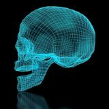 3D Mesh Skull Royalty Free Stock Photo