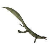 3D Mesosaurusdinosaurus - geef terug Royalty-vrije Stock Afbeelding