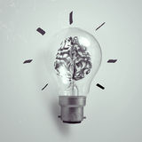 3d metal human brain in a light bulb Royalty Free Stock Photos