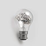 3d metal human brain in a lightbulb Royalty Free Stock Photos