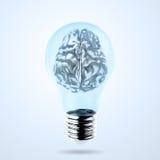 3d metal human brain in a lightbulb Royalty Free Stock Image
