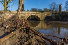 3d może katastrofy tworząca awaryjna powódź ludzcy wizerunki ruszają się nie ludzi dylemat tam niepokoi Fotografia Royalty Free