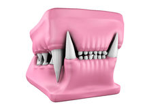 3d model of cat teeth cast. Royalty Free Stock Photography