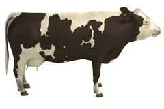 3d model of cow Royalty Free Stock Photos